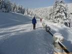 cesta2_zima